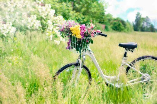 Bicyclette fleurie dans un champ en été