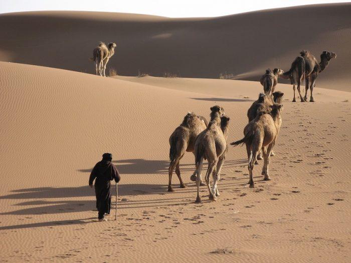 la marche afghane